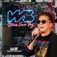 Canción 'Danadinha' del disco 'WS Mais Uma Vez' interpretada por Wesley Safadão