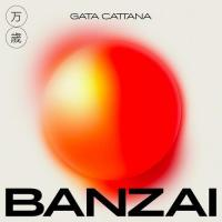 Canción 'Cartas que no repartí' del disco 'Banzai' interpretada por Gata Cattana