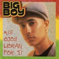 Canción 'Te aseguro' del disco 'Mis Ojos Lloran Por Ti' interpretada por Big Boy