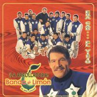 Canción 'Mi gusto es' del disco 'Era Cab - El Viejo' interpretada por La Arrolladora Banda El Limón