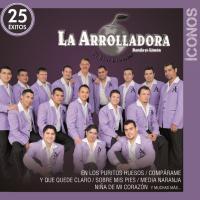 Íconos 25 Éxitos de La Arrolladora Banda El Limón