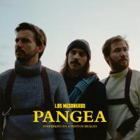Canción 'Dudo Que Lo Encuentres' del disco 'Pangea' interpretada por Los Mesoneros