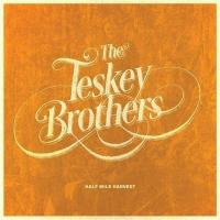 CRYING SHAME letra THE TESKEY BROTHERS