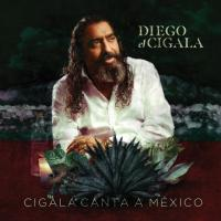 Si Tú Me Dices Ven - Diego El Cigala