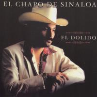 Canción 'El dolido' del disco 'El Dolido' interpretada por El Chapo de Sinaloa