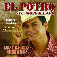 Los Mejores Corridos de El Potro De Sinaloa