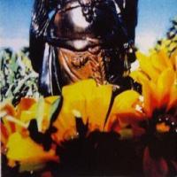 Buddha (Demo) de blink-182