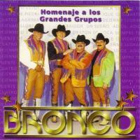 Canción 'Naila' del disco 'Homenaje a los grandes grupos' interpretada por Bronco