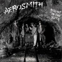 Night in the Ruts de Aerosmith