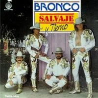 Canción 'Con Zapatos De Tacón' del disco 'Salvaje y tierno' interpretada por Bronco
