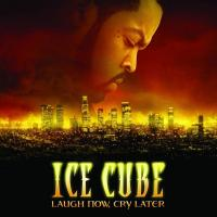 CHROME AND PAINT letra ICE CUBE