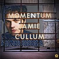 'Everything you didn't do' de Jamie Cullum (Momentum)