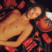 Canción 'Quitapenas' del disco 'Quitapenas' interpretada por Javier Calamaro