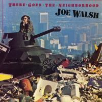 A Life Of Illusion - Joe Walsh