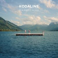 In a Perfect World de Kodaline