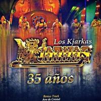 Canción 'Ave De Cristal' del disco '35 años' interpretada por Los Kjarkas