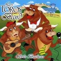 Canción 'Déjame participar en tu juego' del disco 'Solo Bachata' interpretada por Los Toros Band