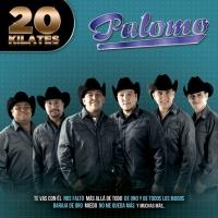 Canción 'Nos Faltó' del disco '20 kilates' interpretada por Palomo