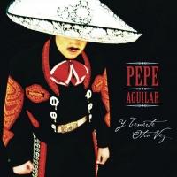 Me Falta Valor - Pepe Aguilar