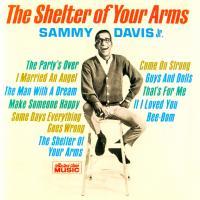 SHELTER OF YOUR ARMS letra SAMMY DAVIS JR.