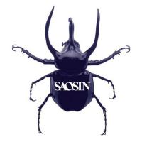 SOME SENSE OF SECURITY letra SAOSIN
