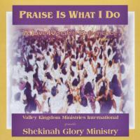 'Praise Is What I Do' de Shekinah Glory Ministry (Praise Is What I Do)