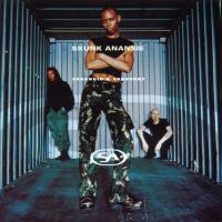 Canción 'Charity' del disco 'Paranoid & Sunburnt' interpretada por Skunk Anansie