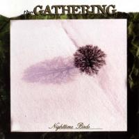 Canción 'Adrenaline' del disco 'Nighttime Birds' interpretada por The Gathering