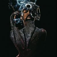 Canción 'Shiver' del disco 'TOXIC' interpretada por The Gazette
