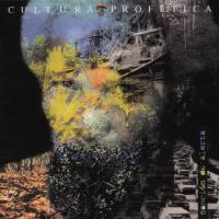 Canción 'Lucha y Sacrificio' del disco 'Canción de alerta' interpretada por Cultura Profética