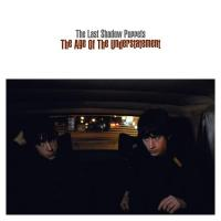 The Age Of The Understatement (Single)