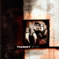 SLEEPING (IN THE FIRE) letra TIAMAT