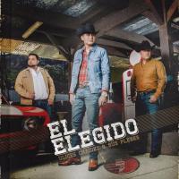 Canción 'Que Bonito Es Querer' del disco 'El Elegido' interpretada por Ulices Chaidez y Sus Plebes