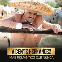 Canción 'Nunca, Nunca, Nunca' del disco 'Más Romántico Que Nunca' interpretada por Vicente Fernández
