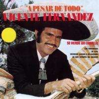A pesar de todo - Vicente Fernández