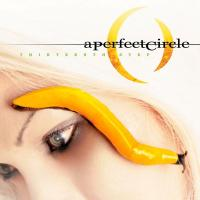 Canción 'The Noose' del disco 'Thirteenth Step' interpretada por A Perfect Circle
