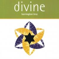 'Too Experienced' de Barrington Levy (Divine)