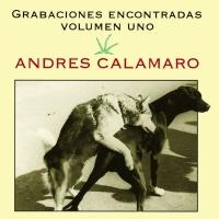 Letra Loco por ti Andrés Calamaro