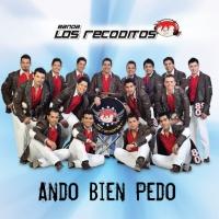 Ando Bien Pedo - Banda Los Recoditos
