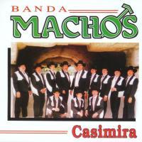 Casimira de Banda Machos