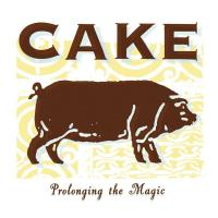 COOL BLUE REASON letra CAKE