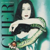 It's a Man's World de Cher