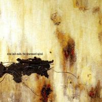 Canción 'A Warm Place' del disco 'The Downward Spiral' interpretada por Nine Inch Nails