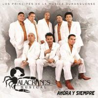 Canción 'Sin Tu Amor' del disco 'Ahora y siempre' interpretada por Alacranes Musical