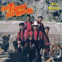Tan bonita de Los Tigres Del Norte