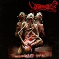 Canción 'Unnormally Zone' del disco 'Human's Pain' interpretada por Yattering