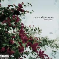 What Is Love? de Never Shout Never