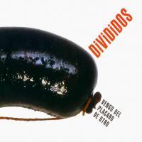 Canción 'Guanuqueando' del disco 'Vengo del Placard de Otro' interpretada por Divididos