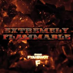 Extremely Flammable - High Profile