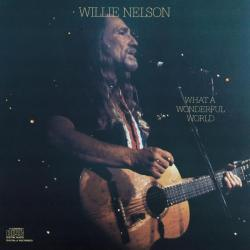 Accentuate The Positive - Willie Nelson | What A Wonderful World
